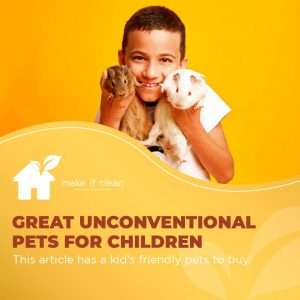 great unconventional pets for children