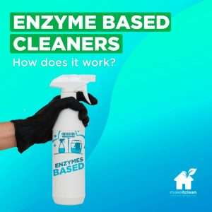 Read more about the article Enzyme Cleaning Products – The Definitive Guide
