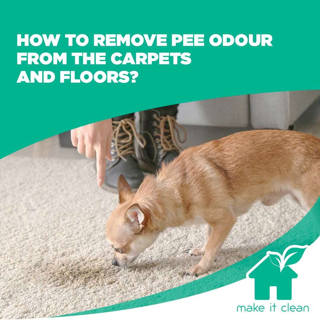 Read more about the article How to remove pee odor from floors
